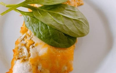Salsa Chicken Enchiladas (THM S)