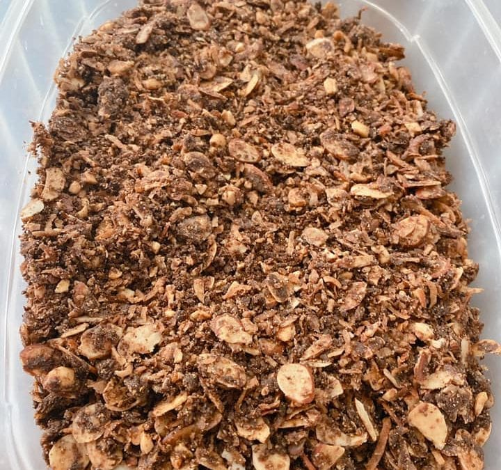 Easy Chocolate Granola (THM S, Keto, Low Carb)