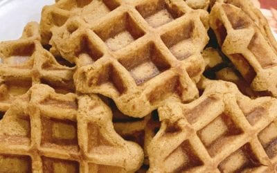 Pumpkin Waffles (THM E or S)